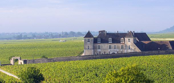 Clos Vougeot_Photo Alain Doire_Bourgogne Tourisme_s