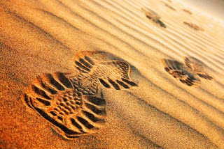 empreintes sable trek elles marchent